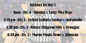 Wrestlingvideo image
