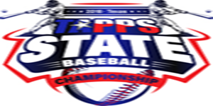 Baseball video image